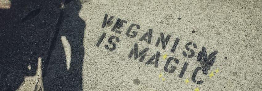 Vegán és Cruelty-Free termékek